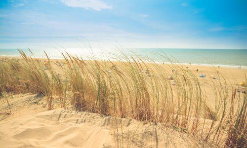 Hooikoorts is de perfecte reden om naar het strand te gaan